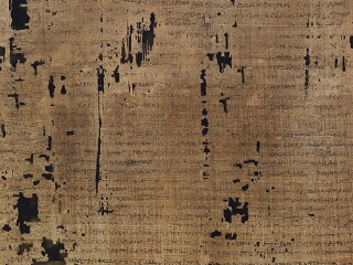 Greek and Latin Papyri